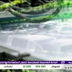 Al Eqtisadiya TV